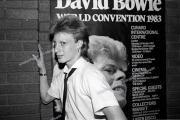 Bowie Fans
