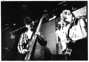 fl0570_fr24_Stray_cats_15_08_80_print